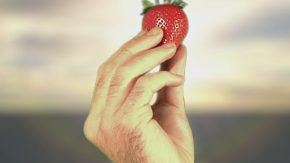 Erdbeere in Hand