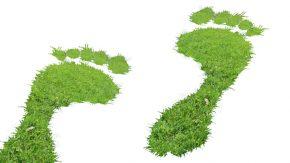 Fußstapfen aus Gras