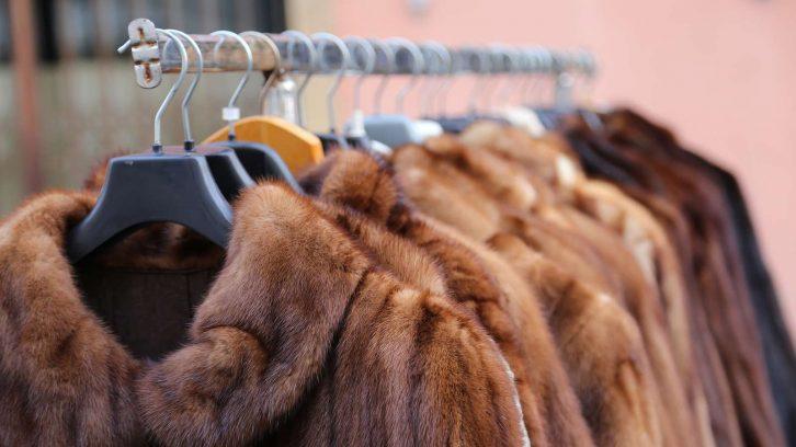 Darf man geerbten Pelz tragen?