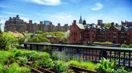 Urban Gardening stammt aus New York
