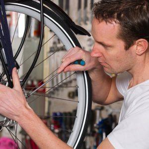 Fahrrad-Inspektion vom Profi