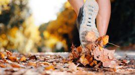 Auch im Herbst ist gut Joggen