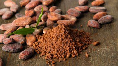 Kakaobohnen und rohes Kakaopulver
