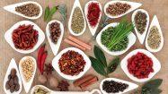 Superfoods für das Immunsystem