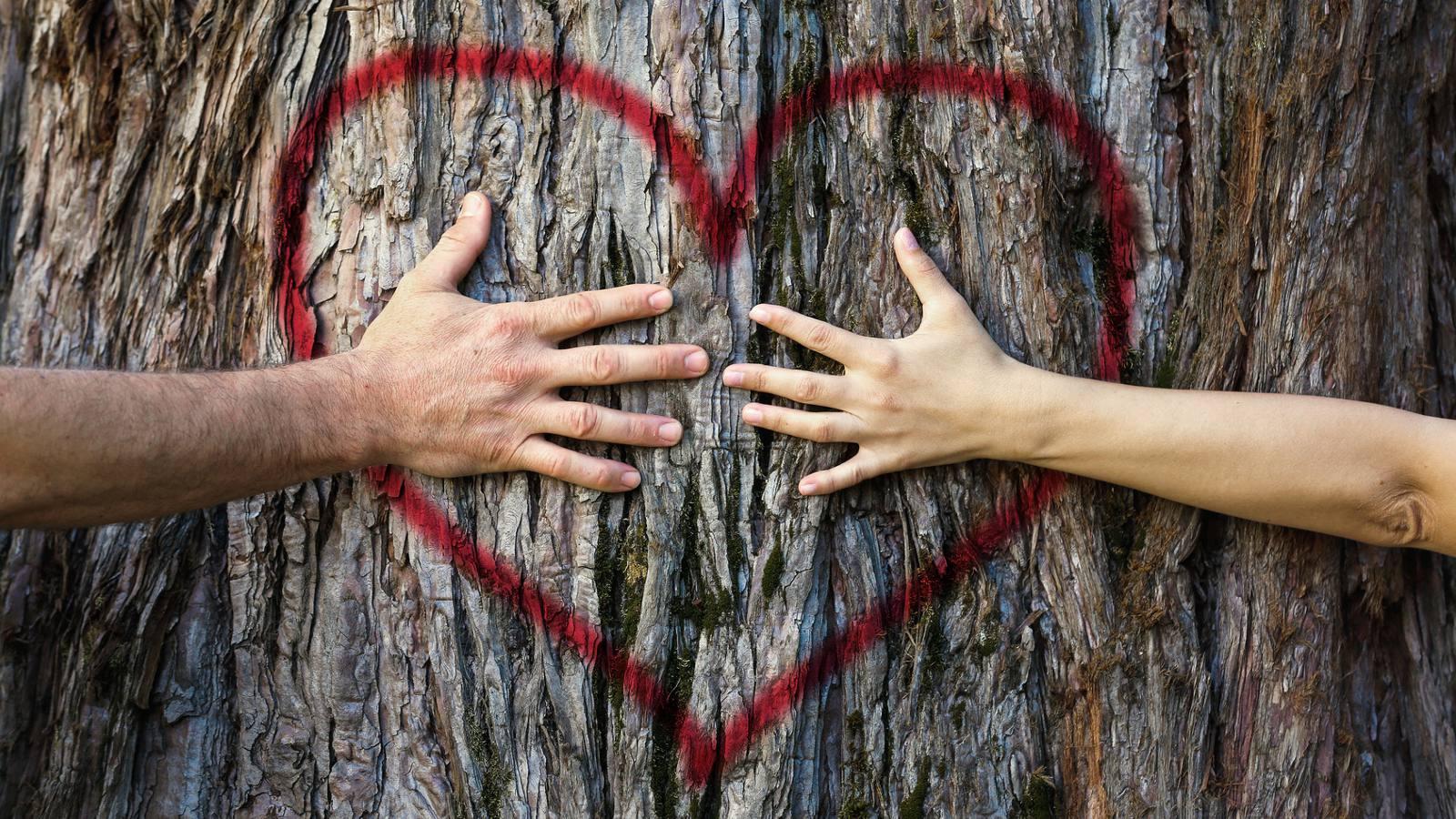 Den Seelenpartner erkennen - Wahre Liebe finden | evidero