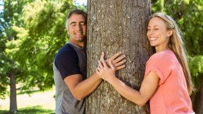 Bäume umarmen aus Liebe zur Natur