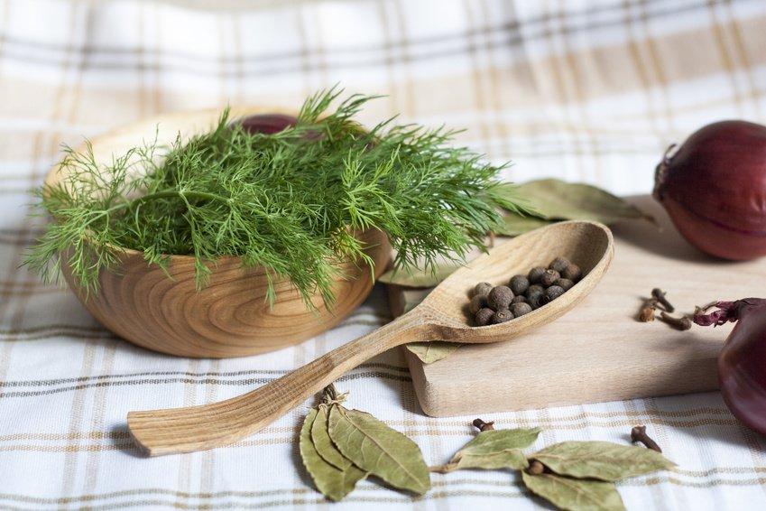 Design#5001139: Das küchenkraut petersilie als heilpflanze | evidero. Wie Man Einen Gesunden Gemuse Garten Plant Und Aufrechterhalt