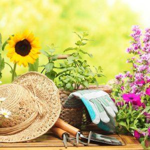 Gartenarbeit ist gesund
