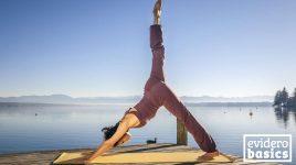 grundlagen power yoga