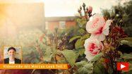 Ein Rosengarten macht glücklich
