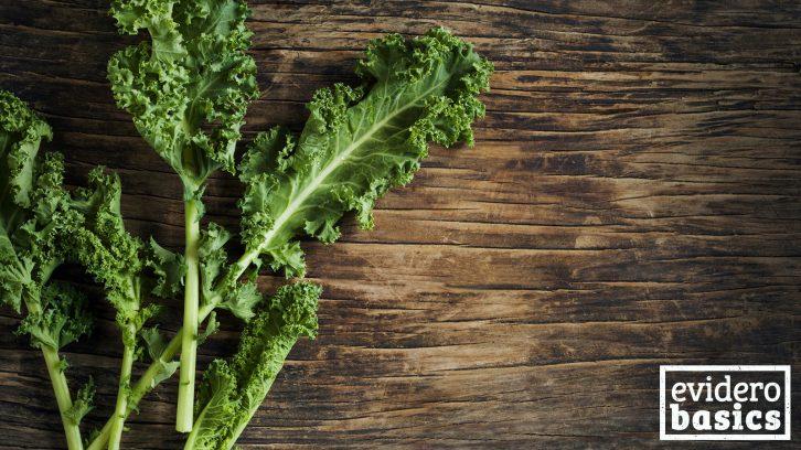 Grünkohl für die Gesundheit