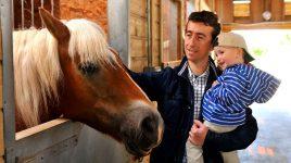 Vater und Sohn im Pferdestall: Stallstaub gegen Allergien