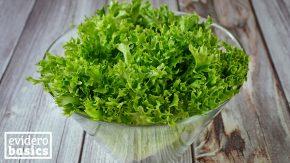 Endivien Salat ist bitter und gesund