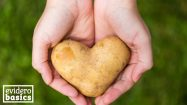 Kartoffeln sind gesundes Gemüse