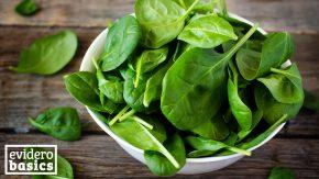 Spinat enthält viele Mineralstoffe