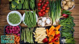 Viel Gemüse in der Trennkost Diät