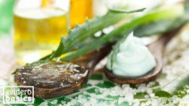 Aloe Vera für die Gesundheit