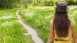 Der Weg zum Glück