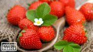 Erdbeeren sind gesundes Sommerobst