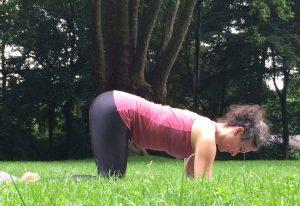 Vierfußstand auf Unterarmen: Aufbau der Basis