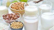 Vegane Milch aus Nüssen oder Reis