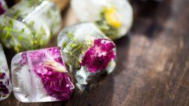 Blüten Eiswürfel selbst machen
