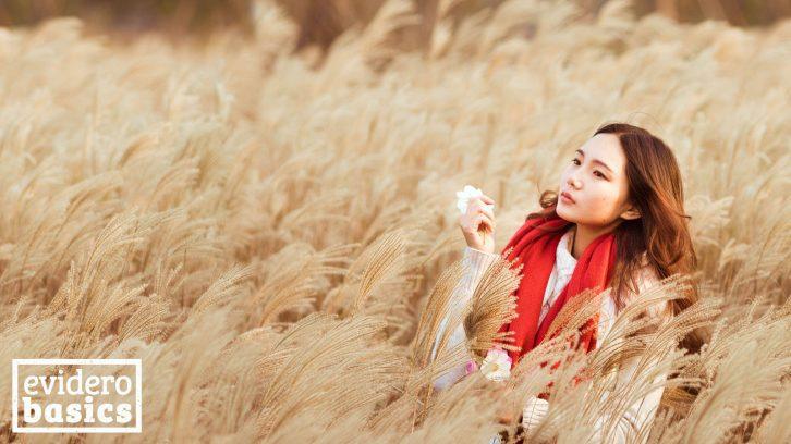 Schön mit den richtigen Kosmetikprodukten durch unser Hautpflege Lexikon