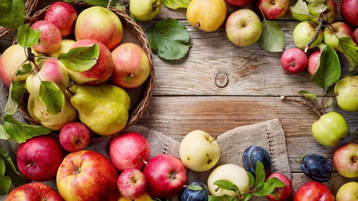 Sortenvielfalt - Alte Apfelsorten