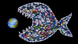Zero Waste - Kein Plastikmüll mehr!