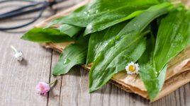 Bärlauchrezepte für den Frühling