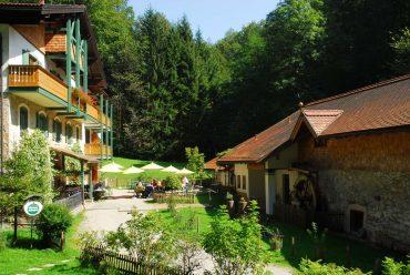 Hotel im Wald Hammerschmiede