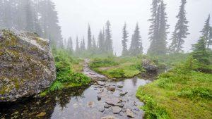 Wunderschön: Wandern im Nebel