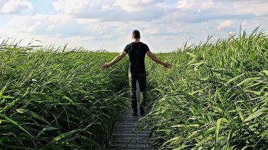 Faszien stärken durch Spazierengehen