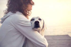 Durch Hunde Empathie lernen